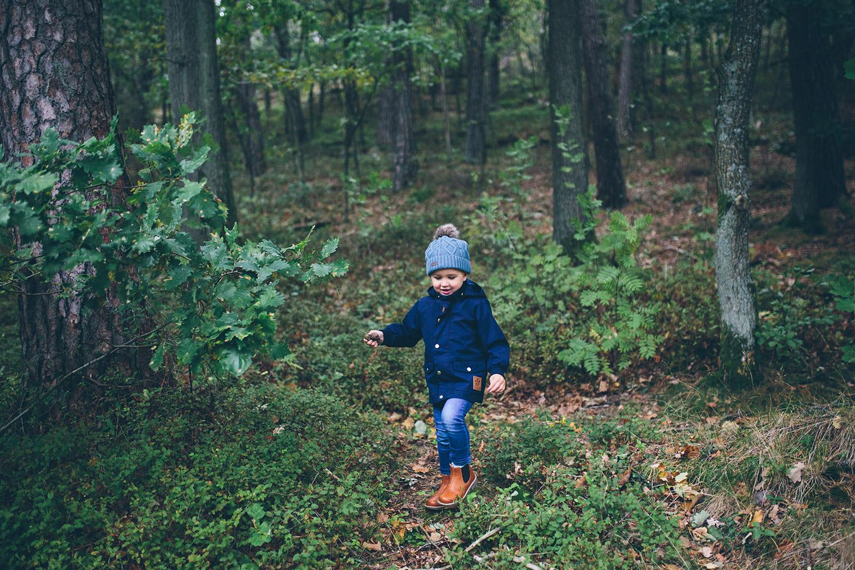 äventyr i skogen